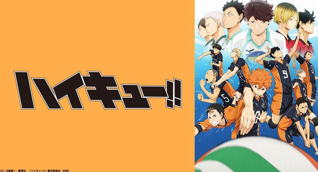 ハイキュー!!(1期~3期)のアニメ全話無料動画!dailymotionやnosub、ひまわりで消えてるけど見る方法は?